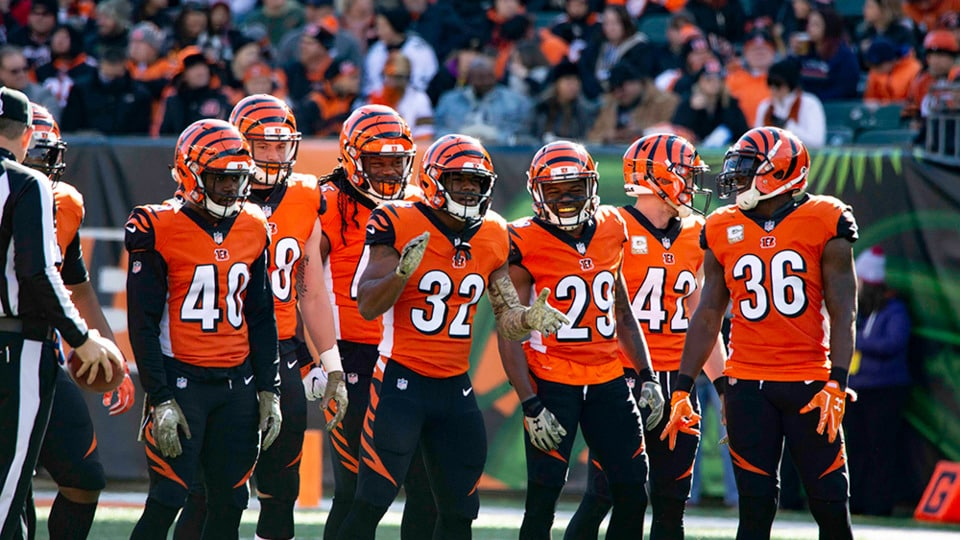 Is It Crazy To Bet Anything On The Cincinnati Bengals?